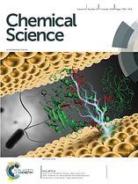 Chem Cover  v2.jpg