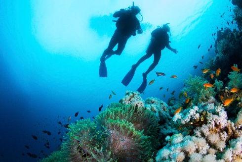 best scuba diving bali