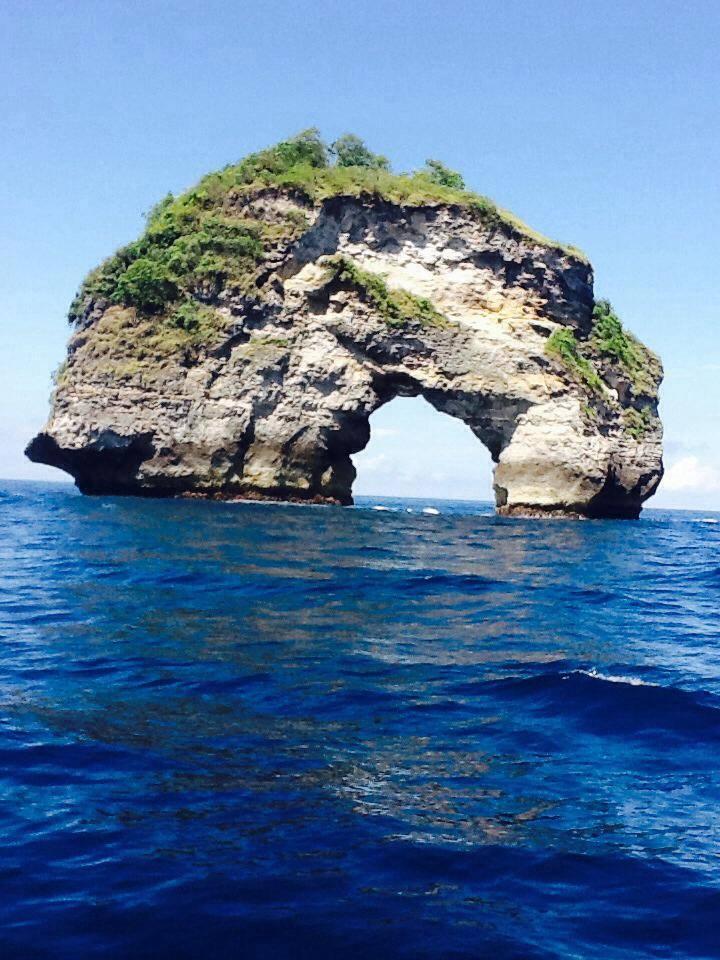 Manta Point Bali Plongée