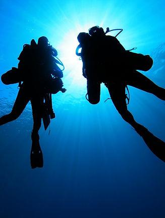 PADI professional Divers
