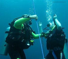 padi open water diver bali