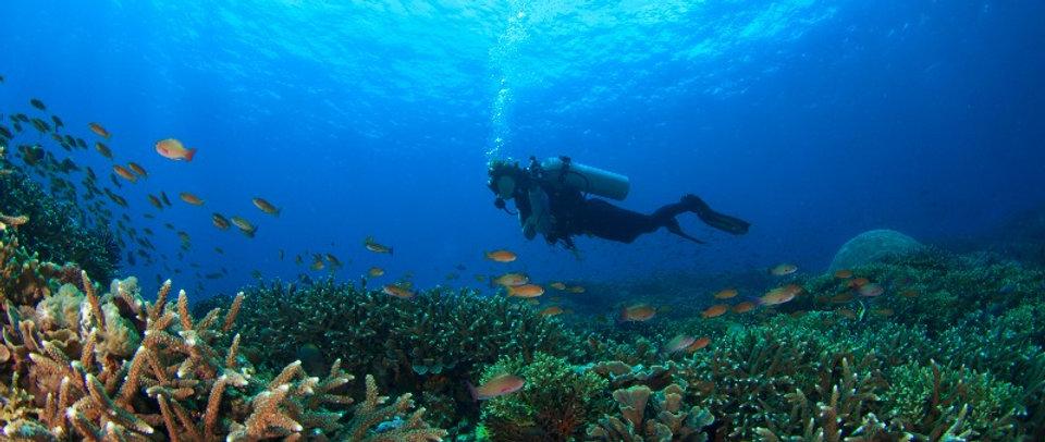 Plongeur a bali