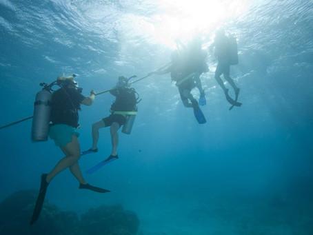 Bienvenue sur le nouveau blog de Bali Breizh Divers