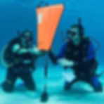PADI-Search-Recovery-1.png