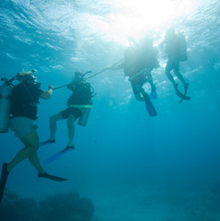 Underwater session in open water