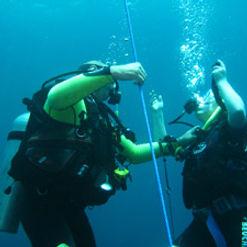 padi open water diver certification bali