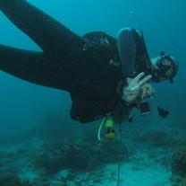 scuba diver instructor