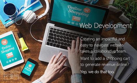 Distinctive Multi Media Group Web Develo
