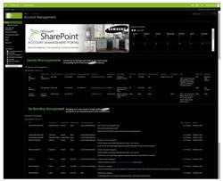 Sales Account Management