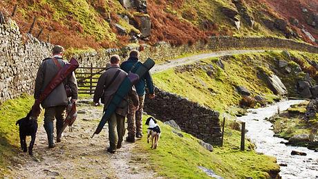 Les hommes de chasse avec des chiens