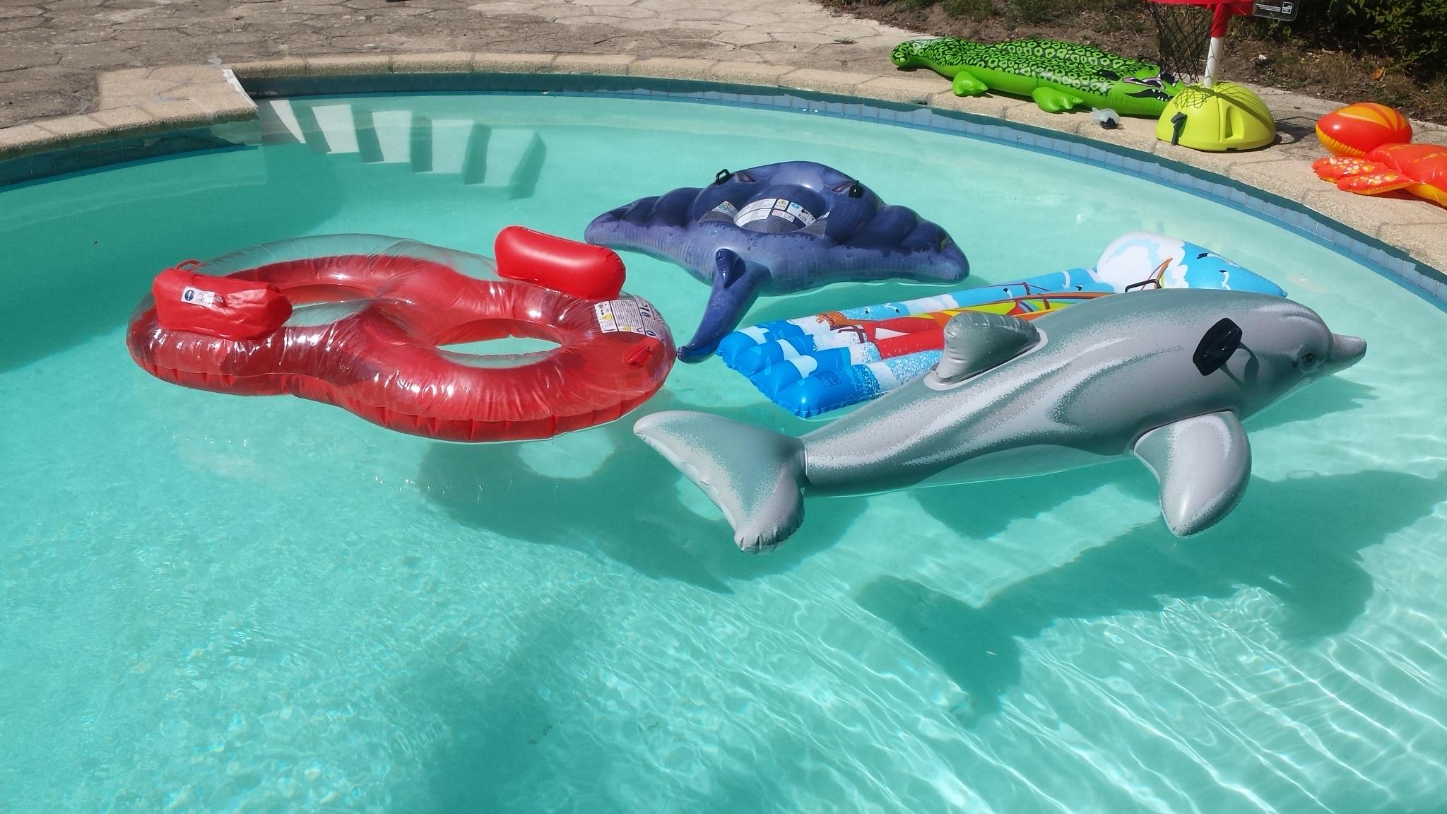 Chambre d'hôtes avec piscine IDF