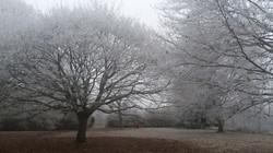 La Grange Evasion figée par le froid