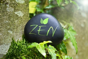 Pourquoi il faut mettre la méditation au centre des thérapies