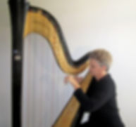 At the concert harp
