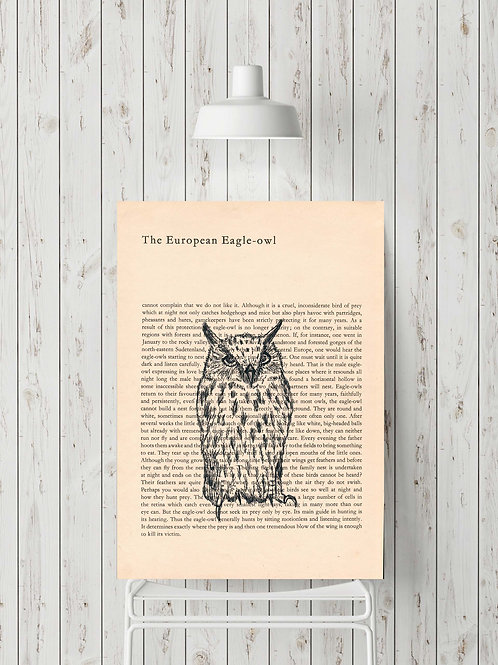 'The European Eagle-owl'