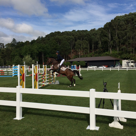 Equestrian surfaces and arenas