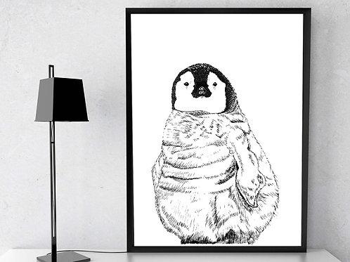 'Emperor Penguin'