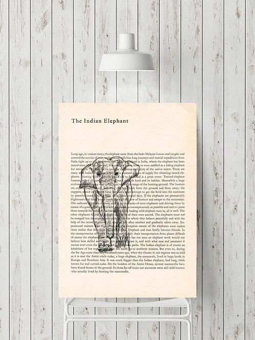 'The Indian Elephant'