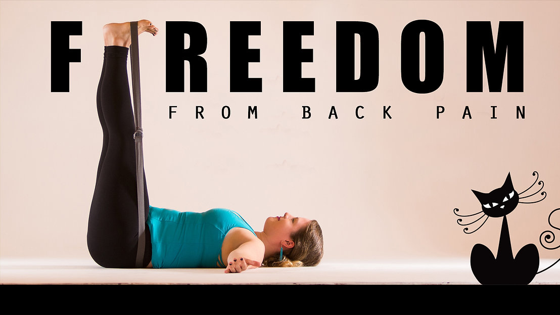 Freedom from Back Pain Workshop2.jpg