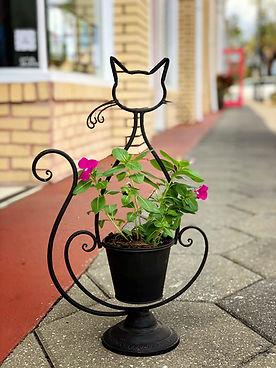 black cat planter.jpg
