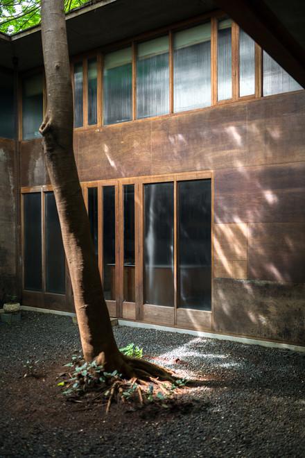 Studio Mumbai, Bijoy Jain