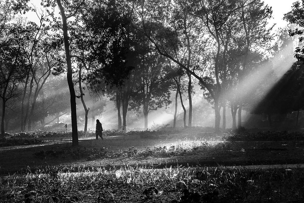 Asif Salman Photography