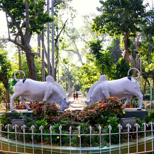 botanical-garden-01-custom.jpg