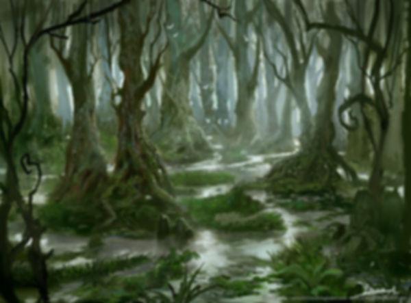 SwampFishing.jpg