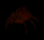 FireSpider.PNG