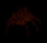 FireSpider.PNG