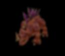 Stegosaurus.PNG