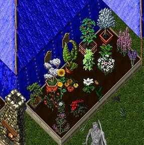 Custom Plants.png