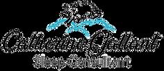 CG_SleepConsultant_logo-color-ENG_edited