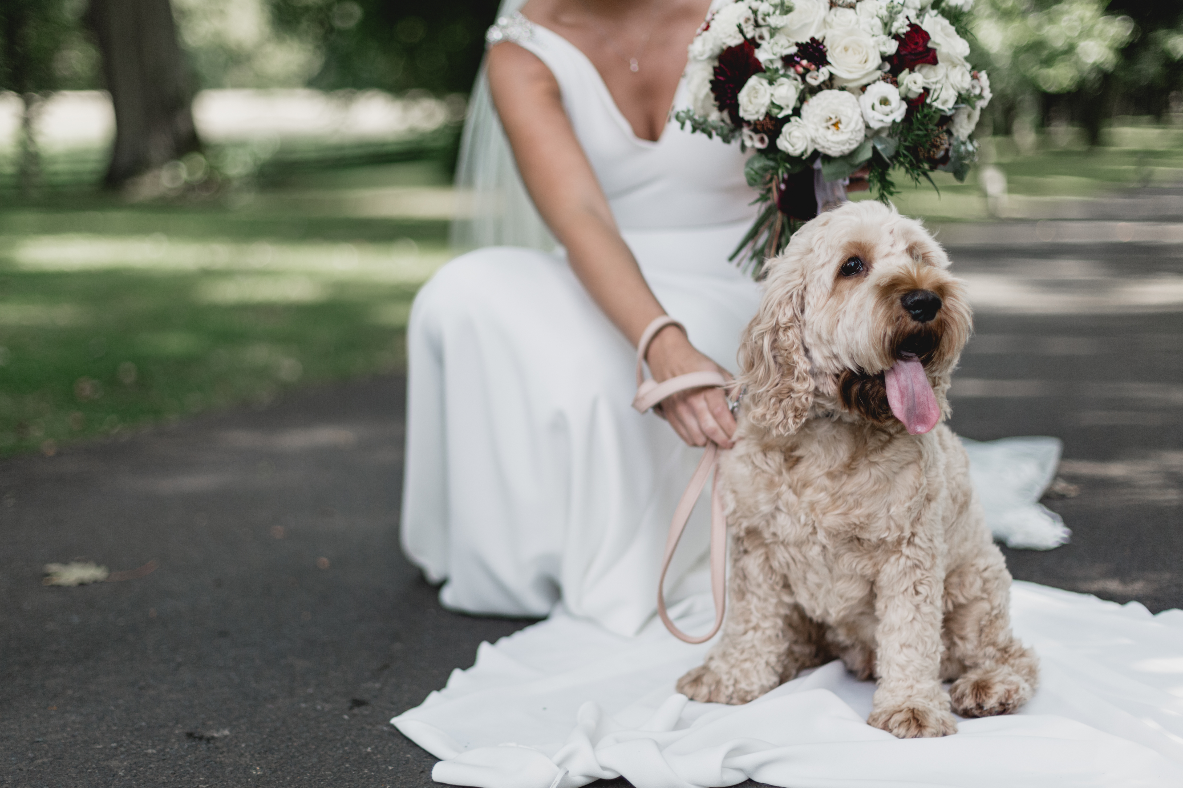 Bride on her Wedding day with her pup vi