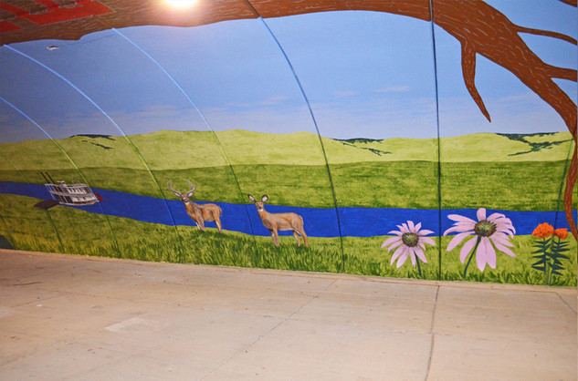 Holmes Tunnel Mural - Shakopee, MN
