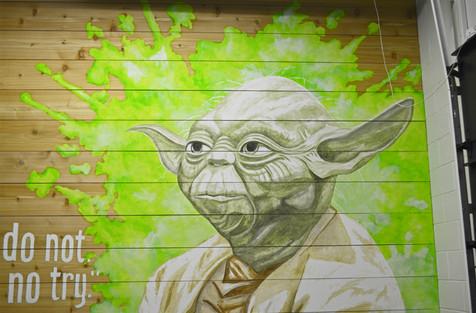 Yoda Mural at Transformation Gym - Chanhassen, MN