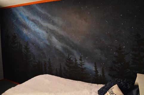 Star Milky Way Wall Mural 1.jpg