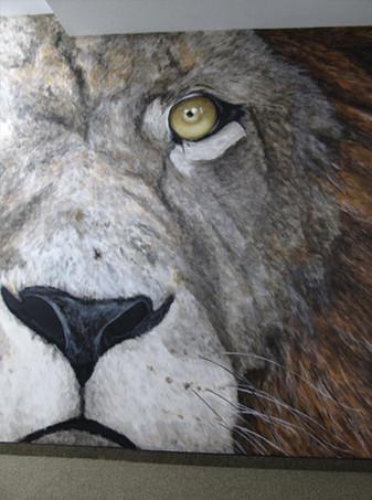 Lions Gym - Robbinsdale, MN