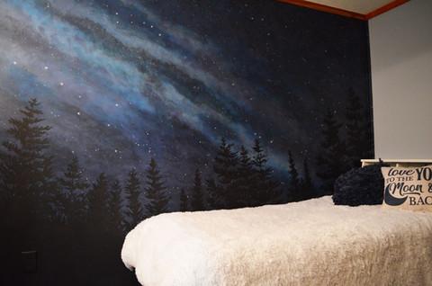 Star Milky Way Wall Mural 2.jpg