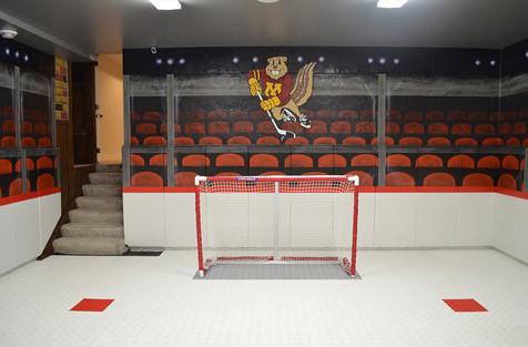 mural hockey goldy.jpg