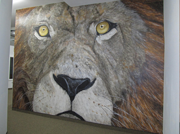 12' x 16' Mural at Lions Gym - Robbinsdale, MN