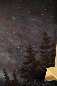 Star Milky Way Wall Mural 7.jpg