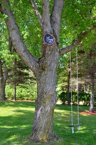 racoon tree mural2.jpg
