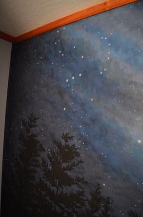 Star Milky Way Wall Mural 6.jpg
