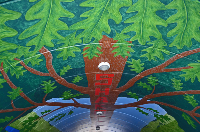 big mural shakopee tunnel ceiling.jpg