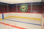 big mural hockey playroom main.jpg