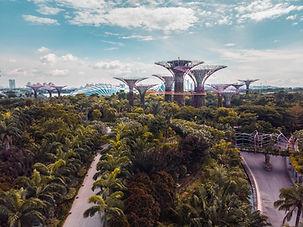 ASEAN市場調査向けコンサルタントインターンシップ
