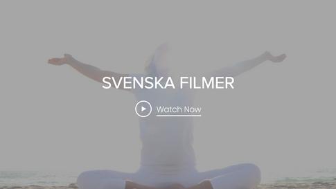 SWEDISH VIDEOS