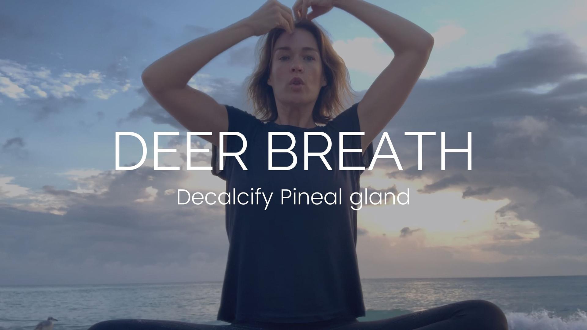 DEER BREATH