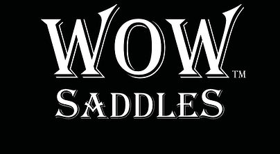 WOW Saddles logo.jpg